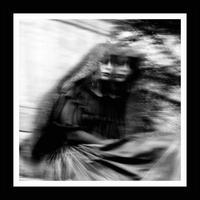 Desolation Sounds - Gallows