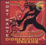 Didgeridooo Dreams