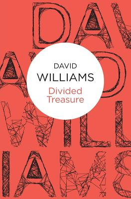 Divided Treasure - Williams, David