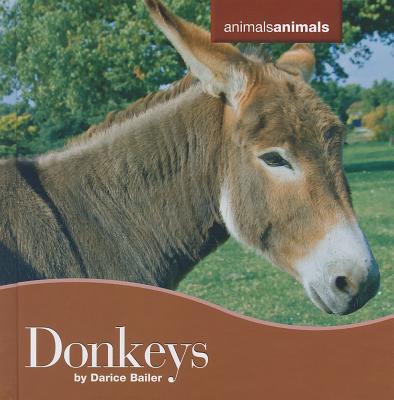 Donkeys - Bailer, Darice