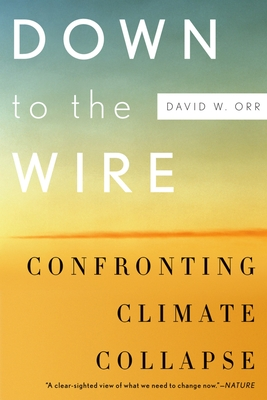 Down to the Wire: Confronting Climate Collapse - Orr, David W