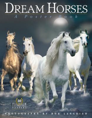 Dream Horses: A Poster Book - Christensen, Elsebeth (Illustrator), and Langrish, Bob (Photographer), and Burns, Deborah (Text by)