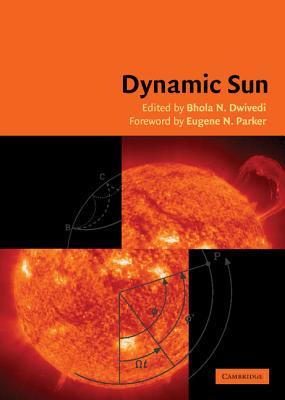 Dynamic Sun - Dwivedi, B N (Editor)