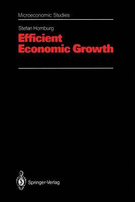 Efficient Economic Growth - Homburg, Stefan