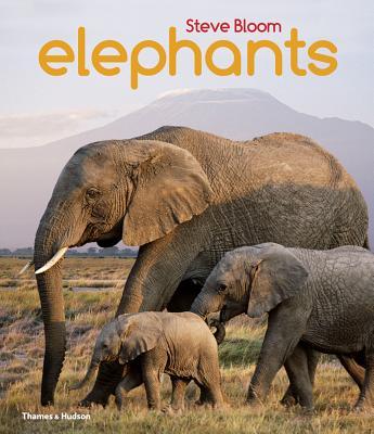 Elephants: A Book for Children - Bloom, Steve, and Wilson, David Henry
