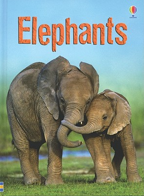 Elephants - MacLaine, James