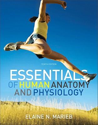 Essentials of Human Anatomy & Physiology: United States Edition - Marieb, Elaine N.