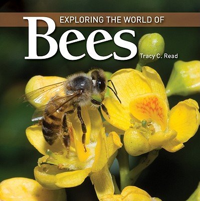 Exploring the World of Bees - Read, Tracy