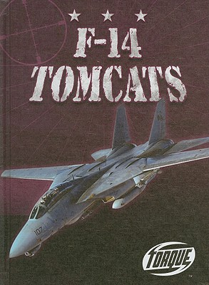 F-14 Tomcats - David, Jack
