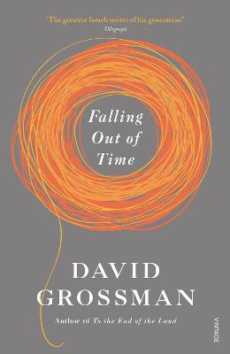 Falling Out of Time - Grossman, David, and Cohen, Jessica (Translated by)