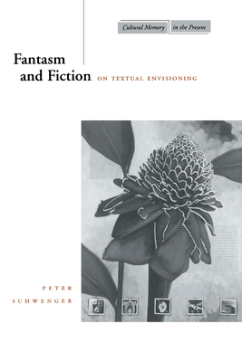 Fantasm and Fiction: On Textual Envisioning - Schwenger, Peter, Professor
