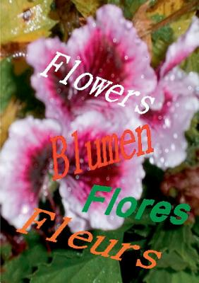 Flowers Blumen Fleurs Flores - Jakobsen, Hendrik