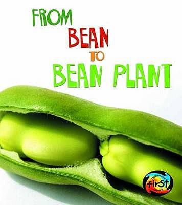 From Bean to Bean Plant - Ganeri, Anita