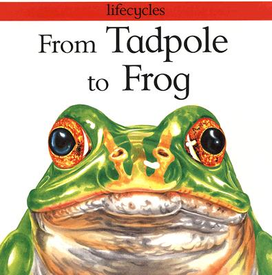 From Tadpole to Frog - Legg, Gerald, Dr., and Stewart, David