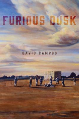 Furious Dusk - Campos, David, Dr.