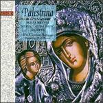 """Giovanni Palestrina: Missa Brevis; Missa """"Lauda Sion""""; Motets"""