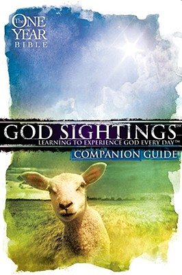 God Sightings One Year Companion Guide - Group Publishing (Creator)