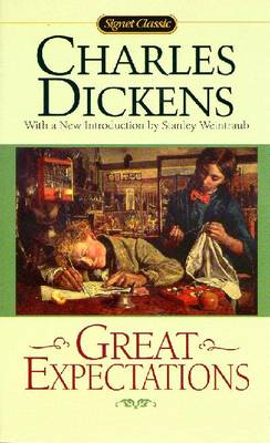 great expectations irony Dickens' great expectations' themes explores many of universal and fundamental ideas, inquisitive to the majority of usdickens has used pip's story to show us many of these.
