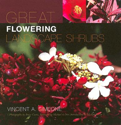 Great Flowering Landscape Shrubs - Simeone, Vincent A, and Curtis, Bruce, Dr. (Photographer), and Dirr, Michael A (Foreword by)