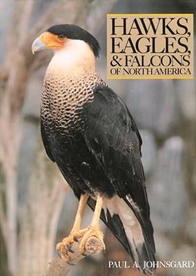Hawks, Eagles, & Falcons of North America: Biology and Natural History - Johnsgard, Paul A