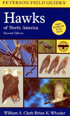 Hawks of North America - Clark, William S