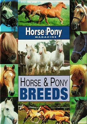 Horse and Pony Breeds - Budd, Jackie