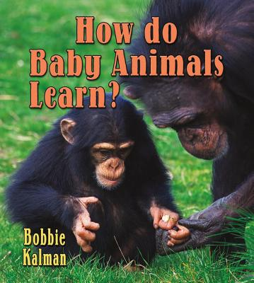 How Do Baby Animals Learn? - Kalman, Bobbie