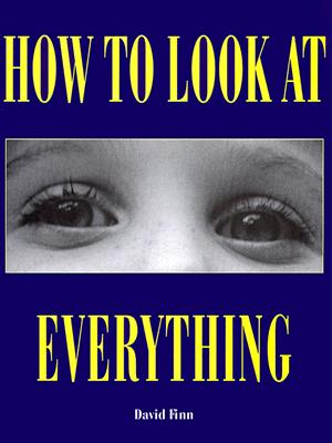 How to Look at Everything - Finn, David