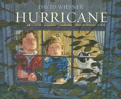 Hurricane - Wiesner, David