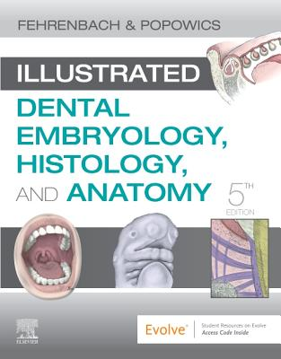 Illustrated Dental Embryology, Histology, and Anatomy - Fehrenbach, Margaret J, MS, and Popowics, Tracy