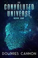 The Convoluted Universe: Book One (the Convoluted Universe Series)