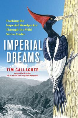 Imperial Dreams: Tracking the Imperial Woodpecker Through the Wild Sierra Madre - Gallagher, Tim