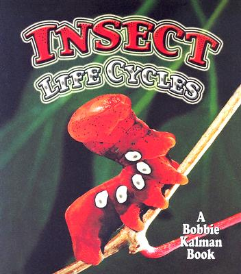 Insect Life Cycles - Aloian, Molly, and Kalman, Bobbie