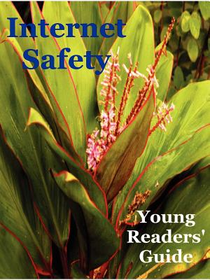 Internet Safety Young Readers' Guide - Roddel, Victoria