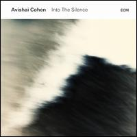 Into the Silence - Avishai Cohen