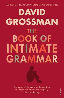 The Book of Intimate Grammar - Grossman, David