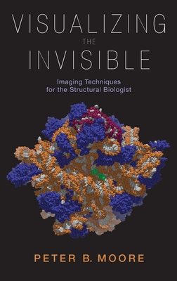 Visualizing the Invisible: Imaging Techniques for the Structural Biologist - Moore, Peter