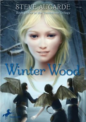 Winter Wood - Augarde, Steve