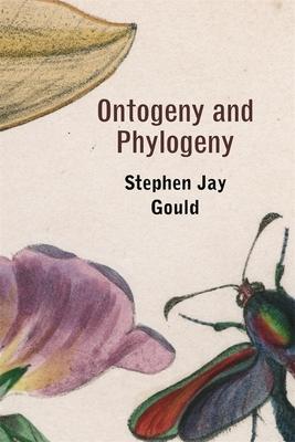 Ontogeny and Phylogeny - Gould, Stephen Jay