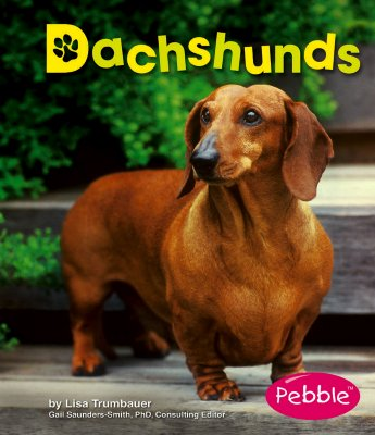Dachshunds - Trumbauer, Lisa, and Saunders-Smith, Gail, PH.D. (Editor), and Zablotny, Jennifer (Consultant editor)