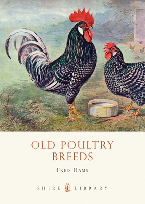 Old Poultry Breeds - Hams, Fred