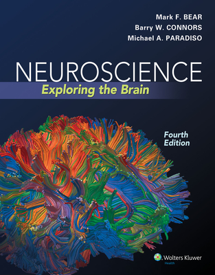 Neuroscience: Exploring the Brain - Bear, Mark F, PhD, and Connors, Barry W, PhD, and Paradiso, Michael A, PhD