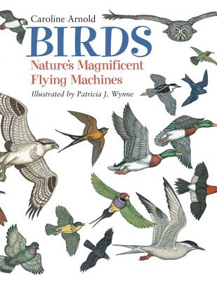 Birds: Nature's Magnificent Flying Machines - Arnold, Caroline