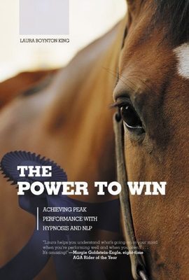 Hunting America's Bear: Tactics for Taking Our Most Exciting Big-Game Animal - Raychard, Al