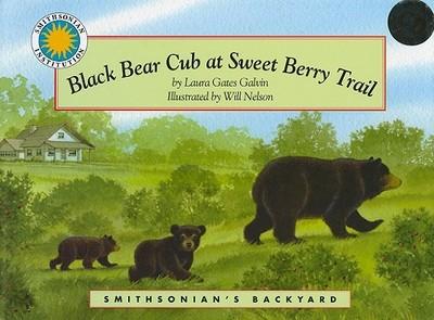 Black Bear Cub at Sweet Berry Trail - Galvin, Laura Gates
