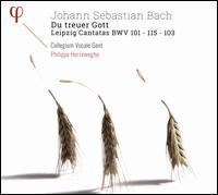 Johann Sebastian Bach: Du treuer Gott - Leipzig Cantatas BWV 101. 115. 103 - Damien Guillon (alto); Dorothee Mields (soprano); Peter Kooij (bass); Thomas Hobbs (tenor); Collegium Vocale (choir, chorus);...