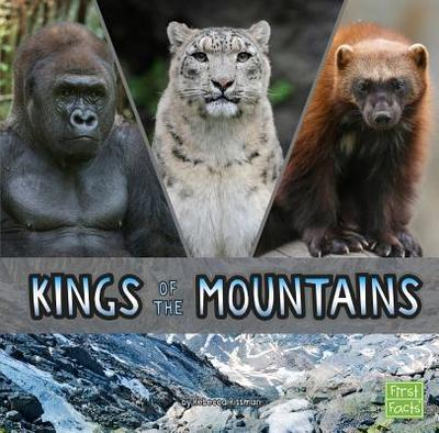 Kings of the Mountains - Rissman, Rebecca