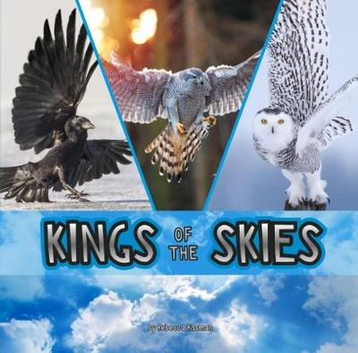 Kings of the Skies - Rissman, Rebecca