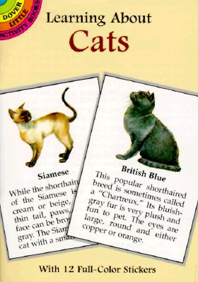 Learning about Cats - Petruccio, Steven James, and Activity Books