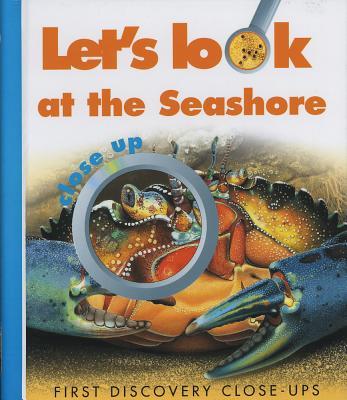 Let's Look at the Seashore - Allaire, Caroline